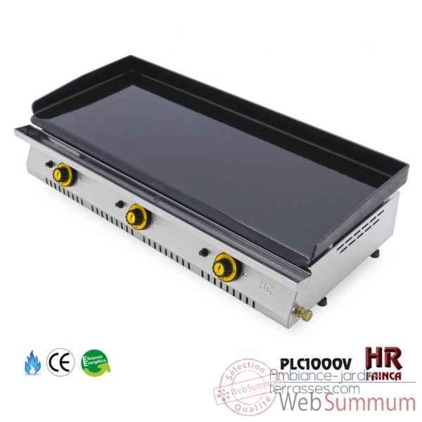Plancha chassis inox lectrique 4 8 kw 2 feux plaque 80x40 for Plancha plaque inox gaz