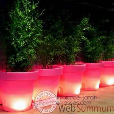 Pot Fleur Lampe 40 Cm Rose De Bloom Dans Pot Lumineux Sur Ambiance