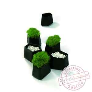 Pot Rock garden small Qui est Paul -380030